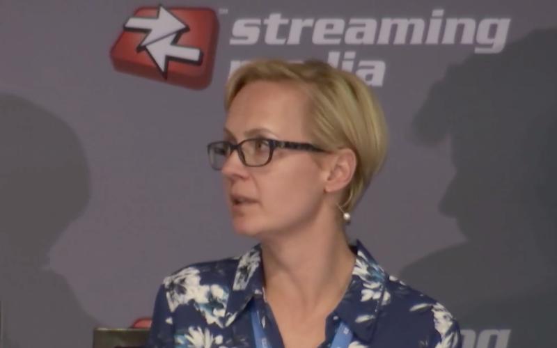 Streaming Media panel